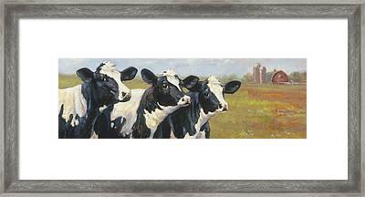 The Cow Girls Framed Print