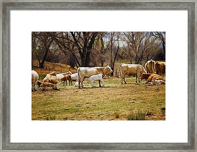 The Cows Digital Art Framed Print