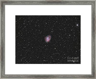 The Crab Nebula, A Supernova Remnant Framed Print by Reinhold Wittich