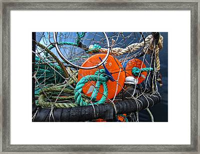 Crab Ring Framed Print