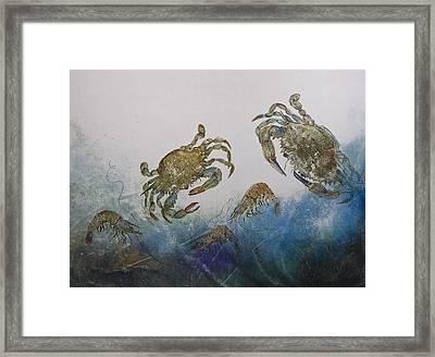 The Crabby Couple Framed Print by Nancy Gorr