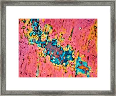 The Crack In The Wall Framed Print by Tom Phillips