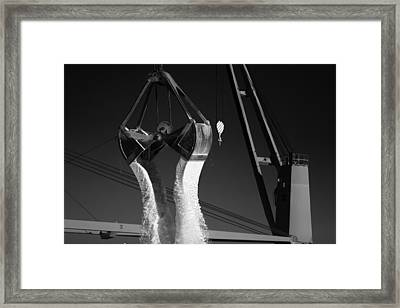 The Cranes Of Portsmouth Framed Print