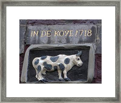 Moo Cow Framed Print by Dave Byrne