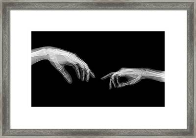 The Creation Of Adam (michelangelo) Framed Print by Photostock-israel