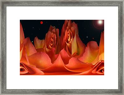 The Creation Of Rose. Framed Print