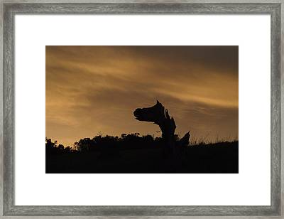 The Creature Framed Print