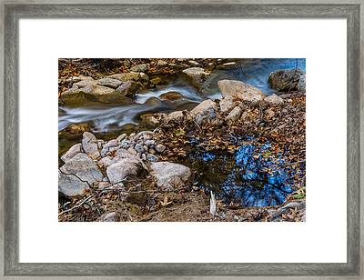 The Creek And The Quiet Pool Framed Print by Beverly Parks