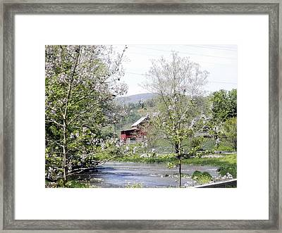 Framed Print featuring the photograph The Creek by Cathy Shiflett