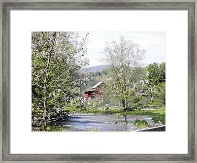 The Creek Framed Print by Cathy Shiflett