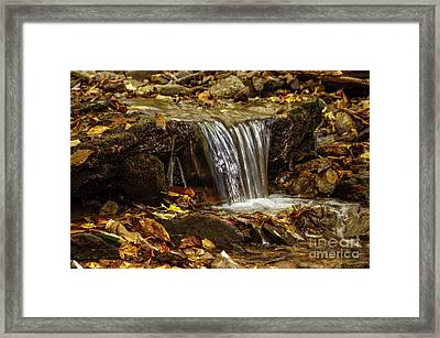 Framed Print featuring the photograph The Creek by Debra Crank