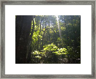 Framed Print featuring the photograph The Cross by Diannah Lynch