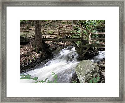 The Crossing Framed Print by Richard Reeve
