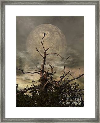 The Crow Tree Framed Print by Isabella F Abbie Shores FRSA