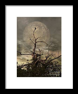 Raven Framed Prints