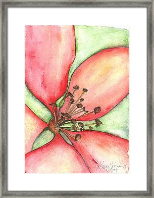 The Crowd Pleaser 1 Framed Print by Sherry Harradence