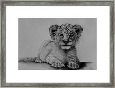 The Cub Framed Print by Jean Cormier