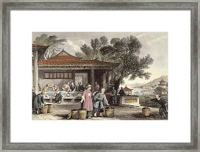 The Culture And Preparation Of Tea Framed Print