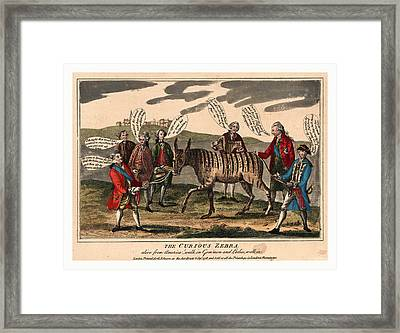 The Curious Zebra Alive From America Walk In Gemmen Framed Print by English School