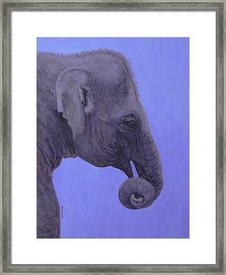 Framed Print featuring the painting The Curled Trunk by Margaret Saheed