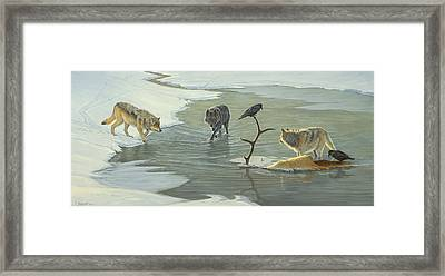 The Cycle-wolves Framed Print