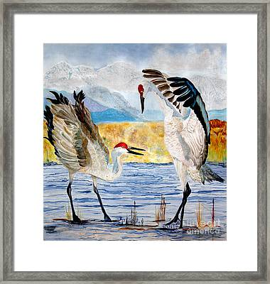 The Dance - Sandhill Cranes Framed Print by Anderson R Moore