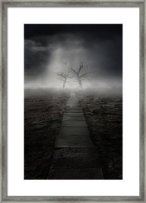 The Dark Land Framed Print by Jaroslaw Blaminsky
