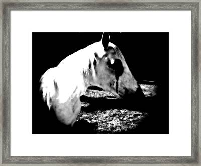 The Dark One Framed Print by Chasity Johnson