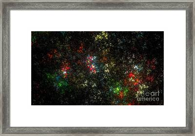 The Dark Side Of Monet Framed Print by Peter R Nicholls