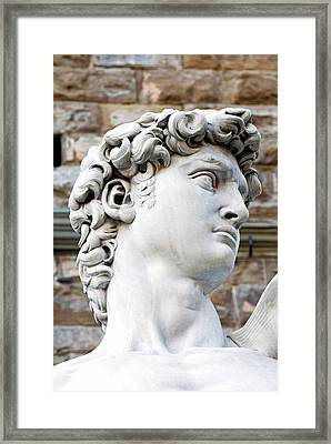 The David Of Michelangelo (16th Century Framed Print by Nico Tondini