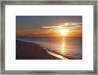 The Dawn's Early Light Framed Print