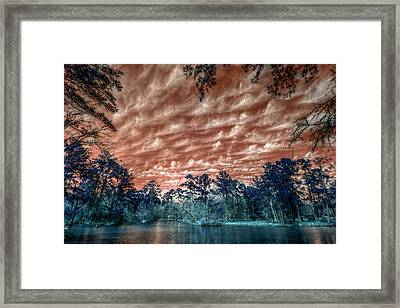 The Day After... Framed Print by Linda Unger