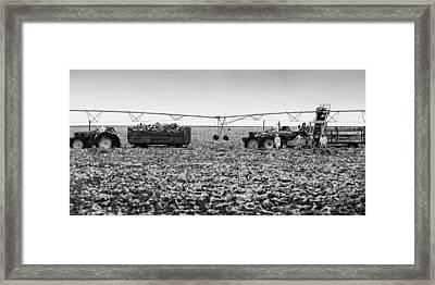 The Day On The Farm Framed Print by Ricky L Jones