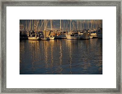 The Day Stills Framed Print by Lee Stickels