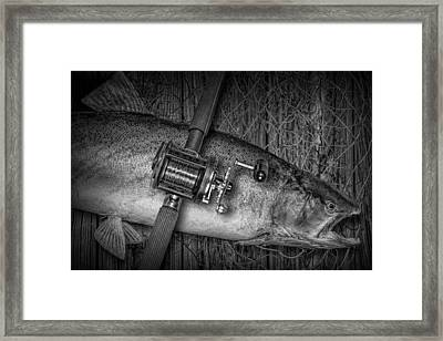 The Day's Catch Framed Print by Randall Nyhof
