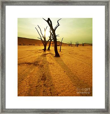 The Dead Valley Framed Print by Boon Mee