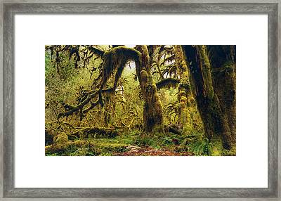 The Deep And The Dark Framed Print by Stuart Deacon