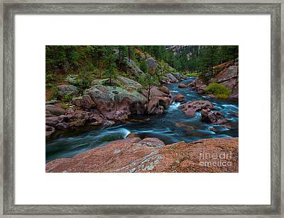 The Deep End Framed Print
