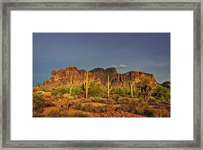 The Desert Aglow Framed Print