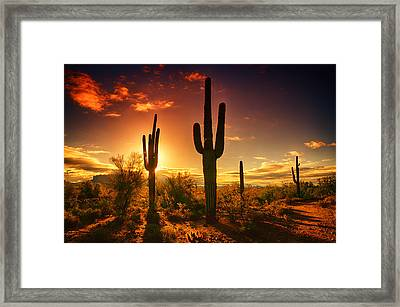 The Desert Awakens  Framed Print by Saija  Lehtonen
