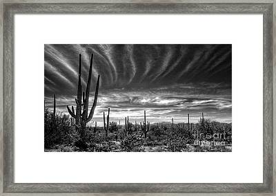 The Desert In Black And White Framed Print