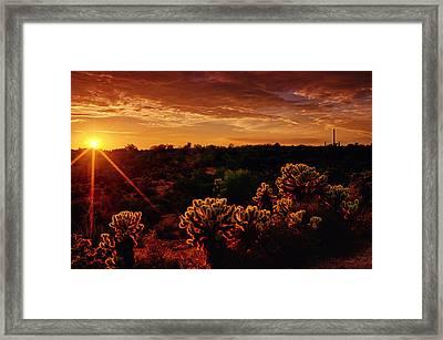 The Desert Magic Hour  Framed Print