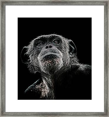 The Dictator Framed Print by Paul Neville