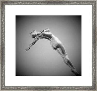 The Free Dive Framed Print