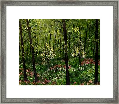 The Division Framed Print by Lisa Aerts