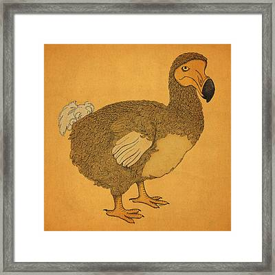The Dodo Framed Print