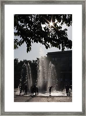 The Dog Days Of Summer Framed Print