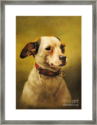 The Dog Framed Print by Celestial Images