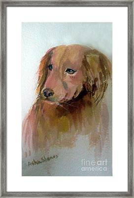 The Doggie Framed Print