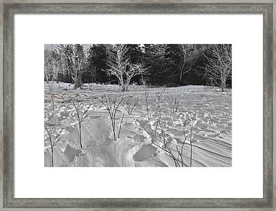 The Drift Framed Print by Donnie Smith